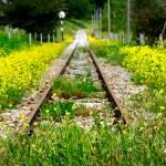 FERROVIE: Domenica si celebrano le linee abbandonate che hanno contribuito all'Unità d'Italia