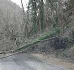 BORGO SAN LORENZO: Appello in Provincia di Rifondazione sulla frana di Polcanto