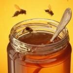 ANIMALI: Come salvare le api, con alcuni gesti e….alcuni clic