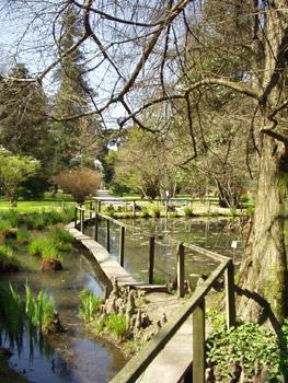 Lucca alla scoperta dei segreti dell orto botanico for Giardino orto botanico firenze