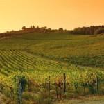 """TURISMO: Tripadvisor incorona la Toscana luogo ideale per il """"buon bere"""""""