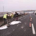 INCIDENTI: Tre morti sulla A14 per una manivra sbagliata