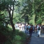 MUGELLO: Il Primo Maggio torna la tradizionale Magnalonga