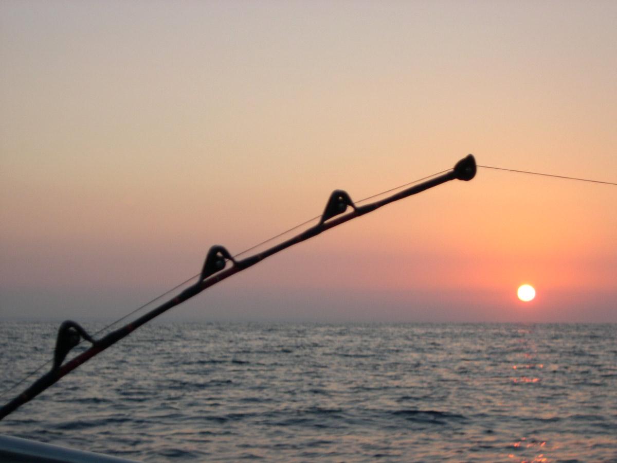 Attrezzatura da Pesca in Mare Canne da Pesca Pesca Mare