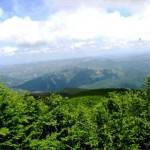 FALTERONA E FORESTE CASENTINESI: domenica si inaugura un nuovo sentiero dedicato a Gino Balli
