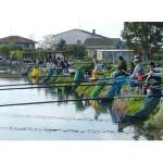 CALDO: L'ENPA chiede lo stop di caccia e pesca per due mesi in Provincia di Firenze per le alte temperature