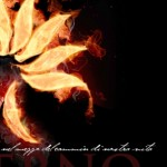 """FIRENZE: Con Dante Alighieri in Piazza della Signoria per il primo """"FlashShow"""" della storia"""