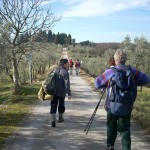 VIA FRANCIGENA: Sabato si inaugura il tratto attrezzato tra San Gimignano e Monteriggioni
