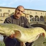 """I """"pesci padani"""" che minacciano l'Arno. I primi risultati della campagna di cattura del pesce siluro"""