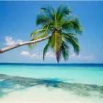 Truffa di un'Agenzia di viaggi, vacanze fantasma per oltre 40 clienti