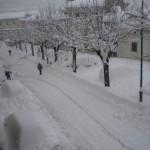METEO: Arriva Giunone, con un carico di freddo e neve. E intanto Coldiretti fa la stima dei danni