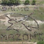 "BRASILE: Parte la nuova campagna di Greenpeace ""Save the Amazon"""