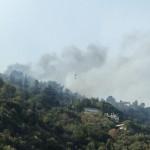 INCENDI E SICCITA': più di 50 milioni di euro di danni nella Provincia di Firenze