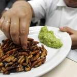 USA: Gara a chi mangia scarafaggi (per vincere un pitone!) finisce in tragedia