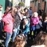 """BORGO SAN LORENZO: gli studenti delle Scuole Elementari impegnati nella """"Giornata dell'Albero"""""""