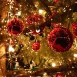 VICCHIO: tre domeniche di iniziative per entrare nel clima natalizio
