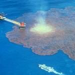 MAREA NERA: Da 3 a 5 miliardi di dollari la multa a BP per inquinamento in Golfo del Messico