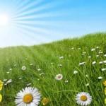 METEO: Finalmente arriva alla primavera. Fine settimana da gita fuori porta