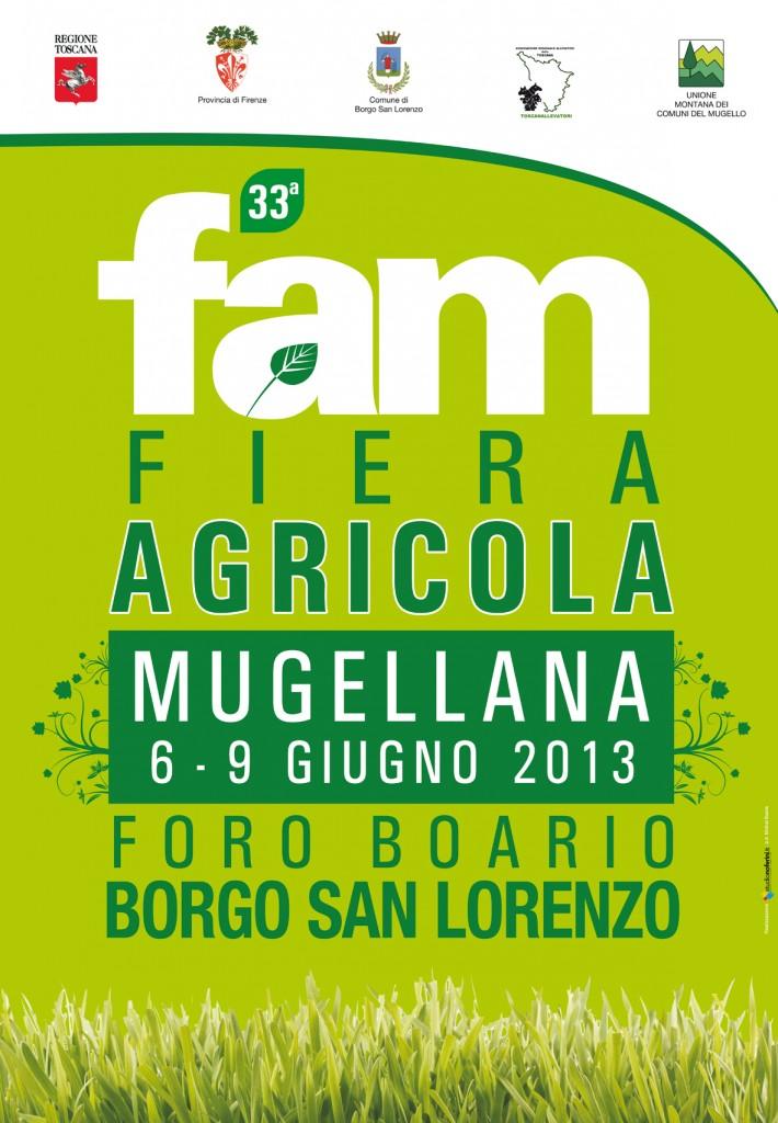 Manifesto FAM 2013.cdr