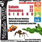 """BORGO SAN LORENZO: Animali esotici, ma non solo, in mostra per """"Mugello Wild"""" a Villa Pecori Giraldi"""