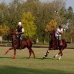 PUNTA ALA: Vela, golf ed equitazione insieme per un fine settimana tutto da provare