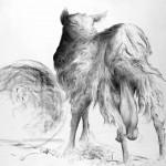 CASTAGNO D'ANDREA: Una grande mostra dedicata a caccia e natura