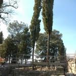 DICOMANO: Cena e spettacoli dedicati agli etruschi a partire da sabato