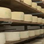 SAURIS: La frazione di Lateis invasa dai profumi del formaggio salato e di malga ad agosto per la tradizionale festa