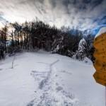 FIRENZUOLA: I sentieri mugellani fanno bella mostra di se grazie al Photo Club Mugello