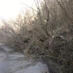 MALTEMPO: Una frana interompe la Palazzuolo-Marradi. Nuovo allarme meteo. Situazione frana e sciacalli a Panicaglia