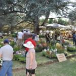 """BORGO SAN LORENZO: Grande apprezzamento e partecipazione per i giardini fioriti di """"Fiorinfiera"""""""