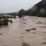 MALTEMPO MAREMMA: le aziende agricole lanciano l'allarme. La Regione chiede lo stato di calamità