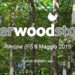 SHERWOODSTOCK –   Una giornata per conoscere il bosco nel cuore della Foresta Modello delle Montagne Fiorentine