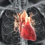 Uso dei defibrillatori nello sport: conclusa la formazione per quasi novanta tecnici e dirigenti