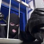 Pontassieve – Ladri nel centro commerciale
