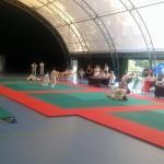 BORGO SAN LORENZO: Bella giornata di sport per gli esami annuali del Budokwai