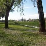 Firenze – A cena per ricostruire il parco dell'Anconella