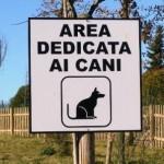 Barberino Mugello – Scade sabato il bando per l'assegnazione della gestione dell'area dedicata ai cani