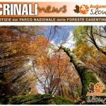Foreste Casentinesi – Il Periodico Crinali news si rinnova