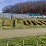 Vicenda Forteto – Odg del Consiglio Regionale della Toscana –  La risposta di Legacoop e Confcooperative  ai vertici della Regione