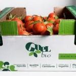 Vicchio – Ortolani alla riscossa – Una raccolta fondi per finanziare le loro attività