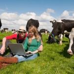 I giovani imprenditori sempre più attratti dall'agricoltura