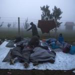"""Rubrica """"Vite in Movimento"""" – Il reato di immigrazione clandestina"""