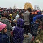 Rubrica Vite in Movimento – L'accoglienza dei profughi in Toscana