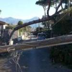 TOSCANA – Vari danni causati dal maltempo in varie zone della regione