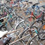 FIRENZE – Ladri di biciclette