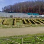 FORTETO  – Seduta presso la sede della cooperativa per la Commissione Regionale d'inchiesta