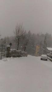 neve consuma 2