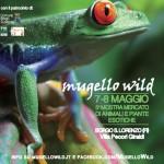 """Borgo San Lorenzo – Il Mugello è sempre più… """"WILD"""". Tante novità per l'edizione 2016"""