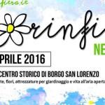 """Borgo San Lorenzo – Ultimi ritocci per """"Fiorinfiera"""" – Domani mattina l'inaugurazione"""